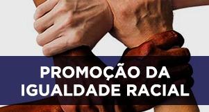 Promoção da Igualdade Racial